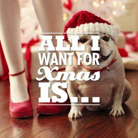 """""""All I want fot Xmas is..."""" verras vrienden en familie met deze schattige kaart van de collectie Happy Wishes van Hallmark.  #hallmark #kerst #christmas #xmas #kerstinspiratie"""