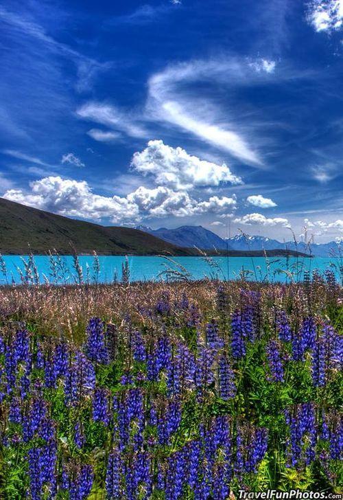 Lake Tekapo, New Zealand  | via Tumblr