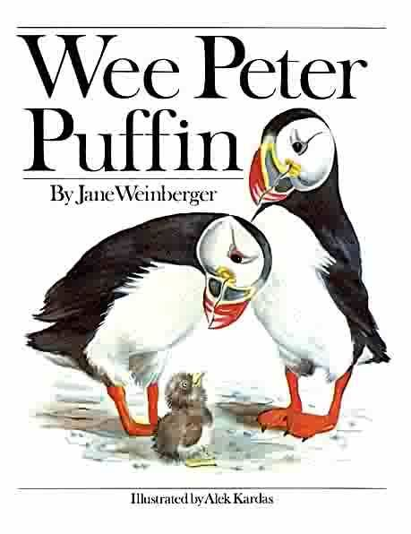 153 best Puffin House images on Pinterest | Pájaros bonitos ...
