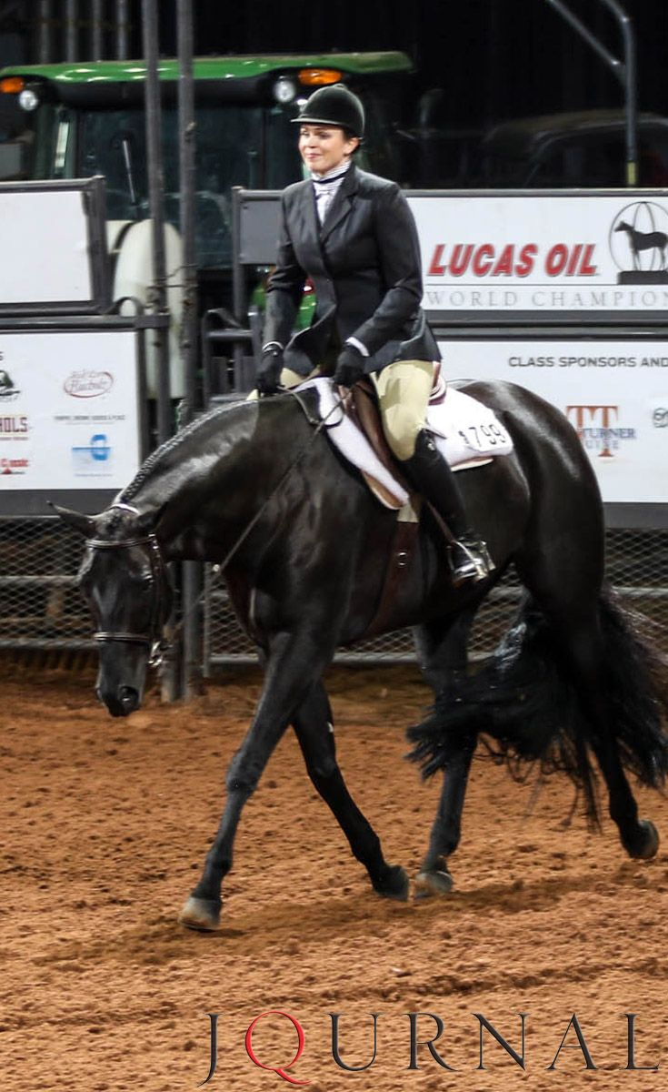 Amateur Hunter Under Saddle I Boys Move Over and Courtney Suzanne Brockmueller, 2016 AQHA world champion