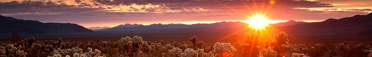 Humans have occupied the area encompassed by Joshua Tree National Park's nearly 800,000 acres for at least 5,000 years.