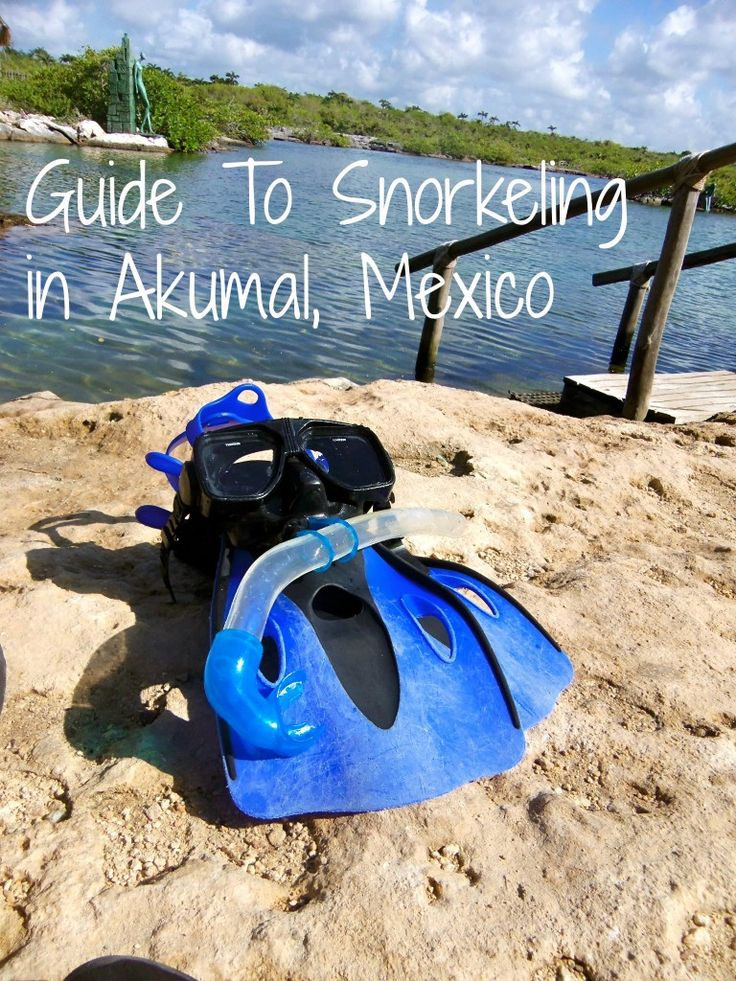 Guide to Snorkeling in Akumal, Mexico.