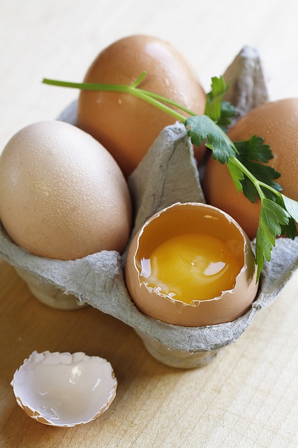 Eggs on Pinterest