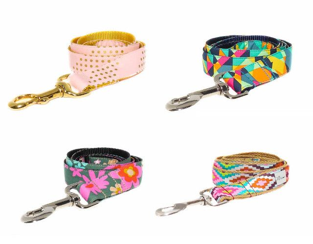 Awesome Dog Collars and Leashes from K9 Couture Co.