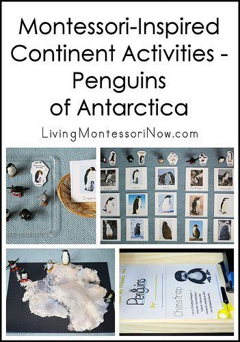 Montessori-Inspired Continent Activities – Penguins of Antarctica