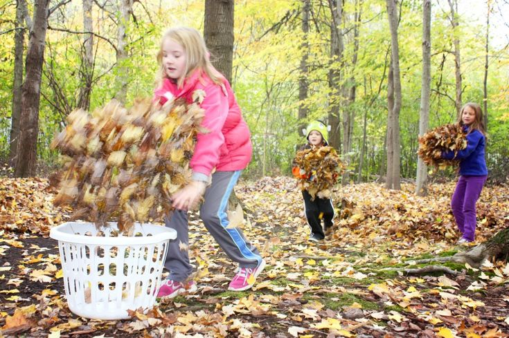 Backyard Treehouse Pediatric Therapy : 1000+ images about Autumn on Pinterest  Thanksgiving, Pumpkins and