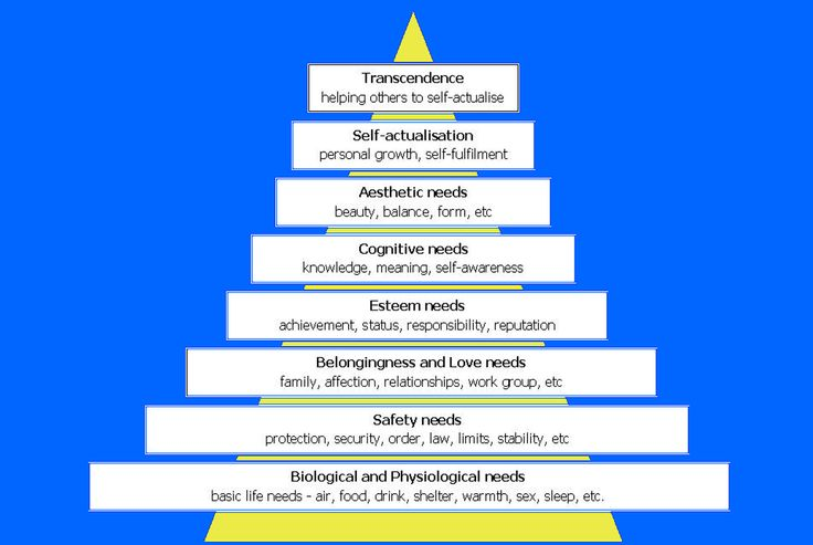 Transcendence was added to the top- helping others self-actualize is the height of human success. Maslow's Hierarchy of Needs