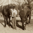 10 Best Normandy Farms Foxboro Ma Images On Pinterest