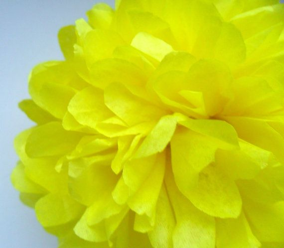 1 Light Yellow Tissue Paper Pom Pom  Wedding by PaperPomPoms