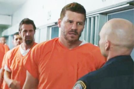 [Video] 'Bones' Comic-Con 2014 Spoilers: Booth Traumatized, New Digs and the 200th Episode