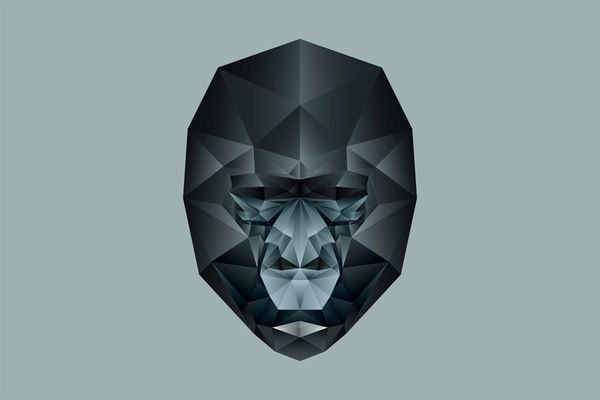 .: Animals, Graphic, Nachos, Geometric Animal, Illustrations, Art, Gorilla, Design