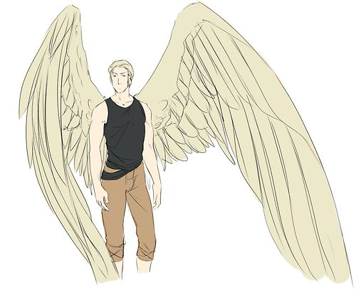 Germany - Ludwig Sunny pale wings, prefers light clothing. You say light clothing, yet he's wearing a black tank top.