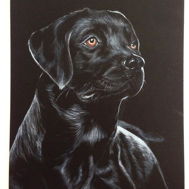 Black dog painting, black paper Instagram dayna.bar