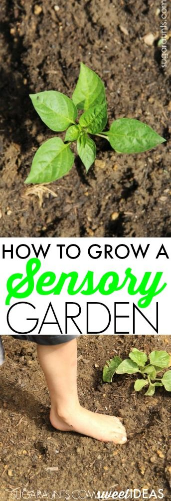 Gardening Ideas For Schools school garden ideas crafts gardening Best 25 Garden Club Ideas On Pinterest