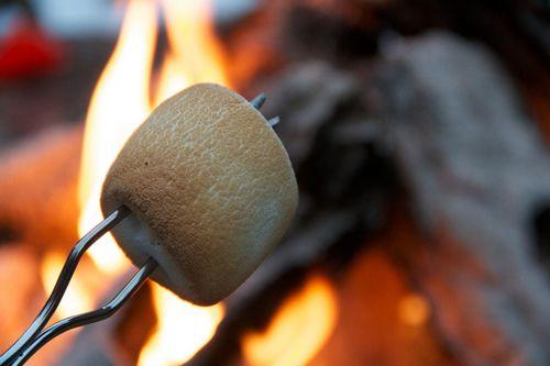 Roasting marshmallows~