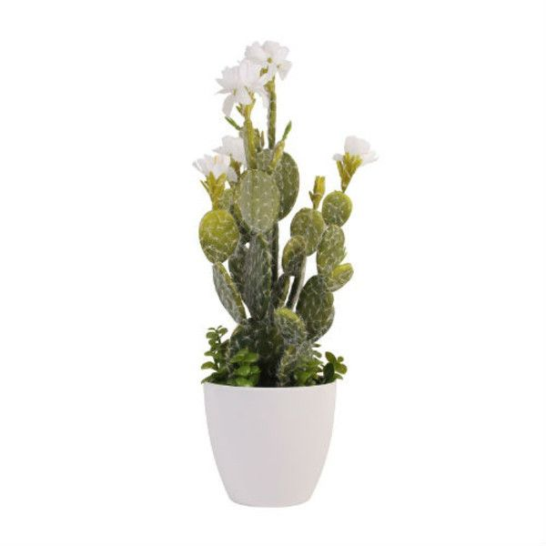 best 25 artificial cactus ideas on pinterest plant pots for sale coffee on sale and bonsai. Black Bedroom Furniture Sets. Home Design Ideas