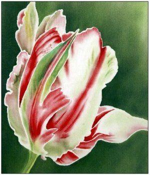 Tulipe perroquet, peinture sur soie, Tessa Spanton