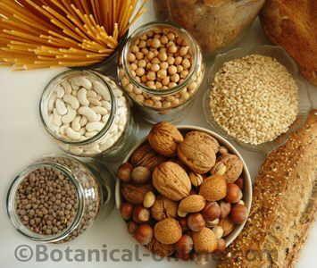 Alimentos Que Contienen Proteinas