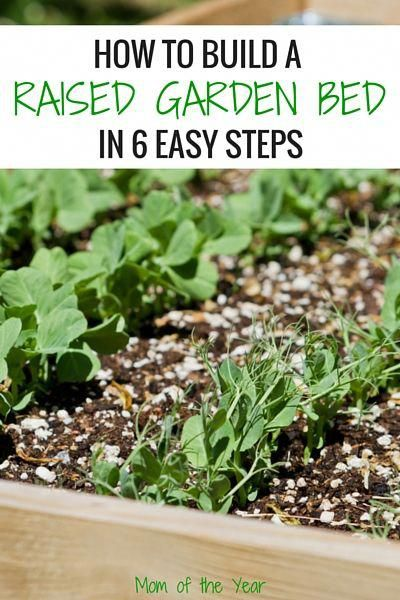 Wanting to build a raised garden bed for your home vegetable garden