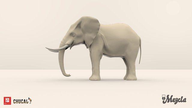 Modelación Elefante