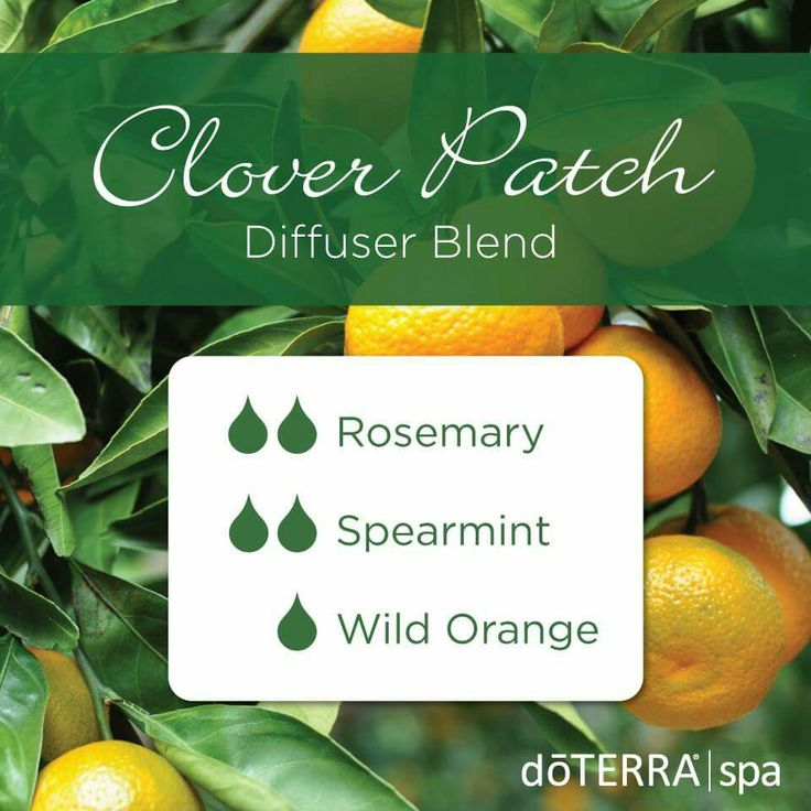 Clover Patch Diffuser Blend 2 drops Rosemary 2 drops Spearmint 1 drop Wild Orange DōTERRA Spa