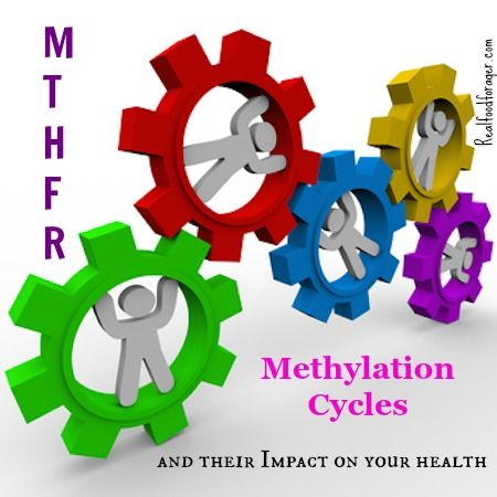 MTHFR, Methylation Cycles and Their Impact on Your Health post image