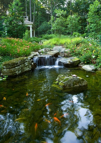 1000 images about rock walls and pond architecture on for Garden design galway