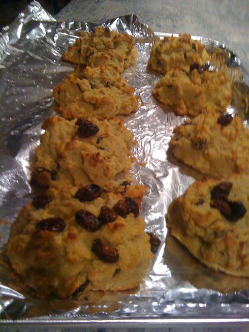 Coconut flour, raisin cinnamon scones. Great if you have a gluten free ...