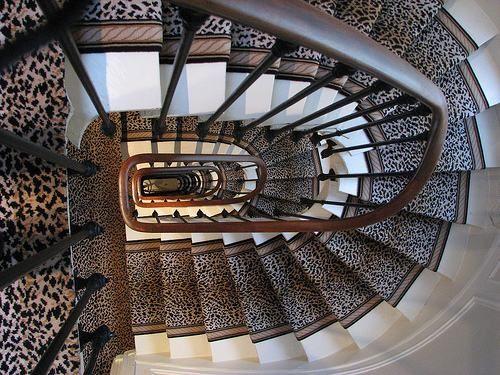 stair animal leopard print carpet entrance foyer home decor room ideas