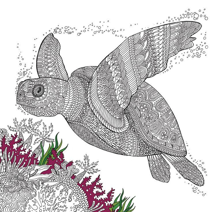 eine schildkröte zum ausmalen  ausmalbilder mandala