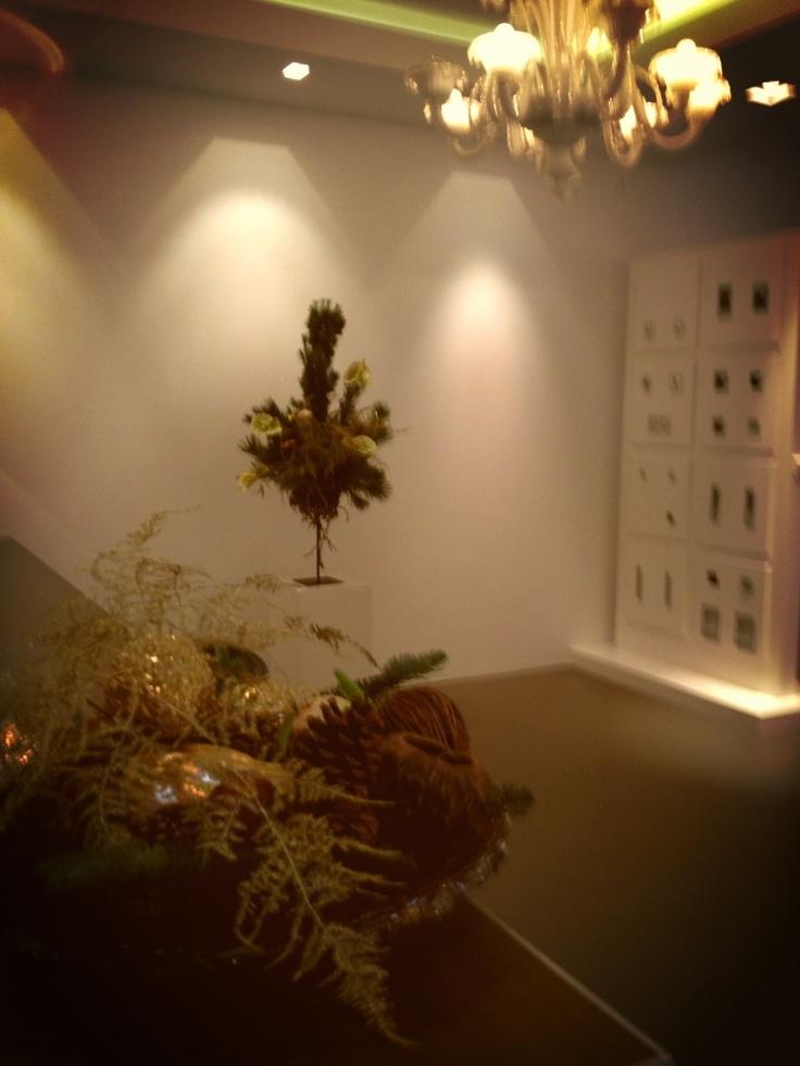 Decoratie bij de mooiste Lampenwinkel van Alkmaar Aladin