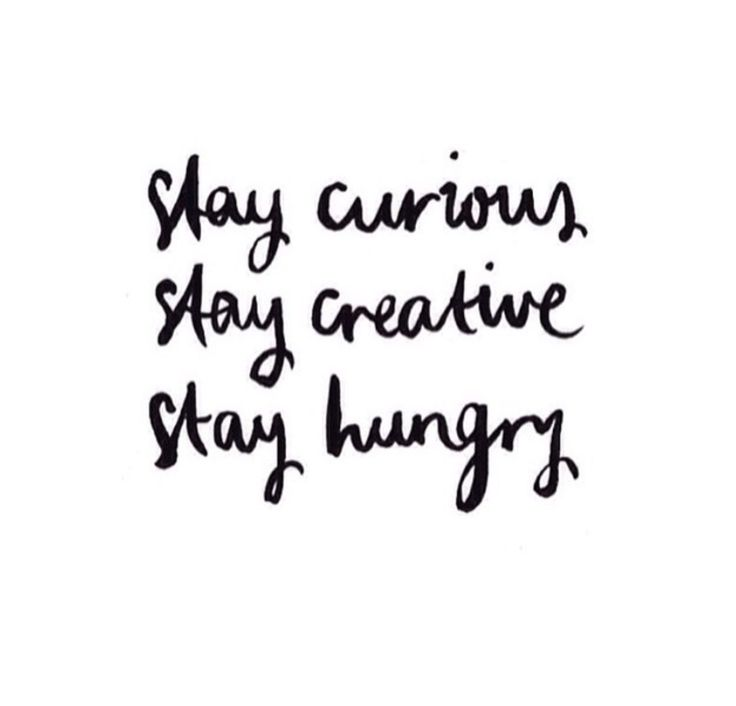 Stay curious Stay creative Stay hungry