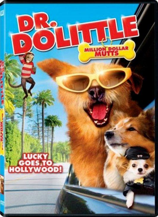 Dr. Dolittle est un film réalisé par Betty Thomas en 1998. Quand il était enfant, le fringant Dr. John Dolittle possédait un don merveilleux, celui de communiquer avec les animaux. Quand son père s'en aperçoit, il y met immédiatement bon ordre et le petit John se mit à travailler à l'école et oublia ce pouvoir. Mais voilà qu'après avoir refoulé pendant des années la plus précieuse de ses facultés, Dolittle la redécouvre un soir où il manque d'écraser un chien errant et s'entend...