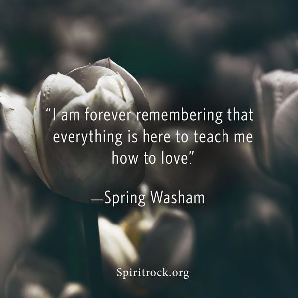 Spring Washam Quote
