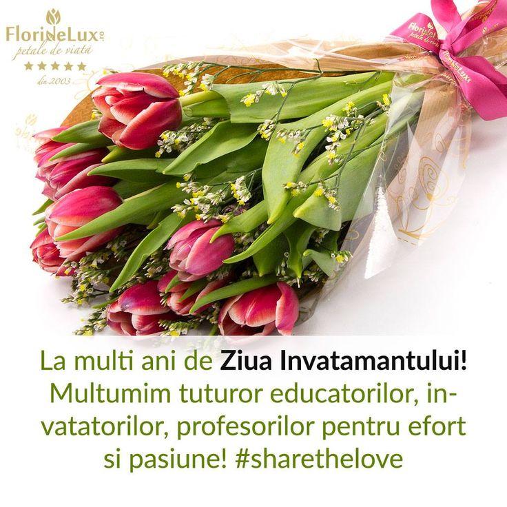 felicitare cu flori pentru Ziua Invatamantului