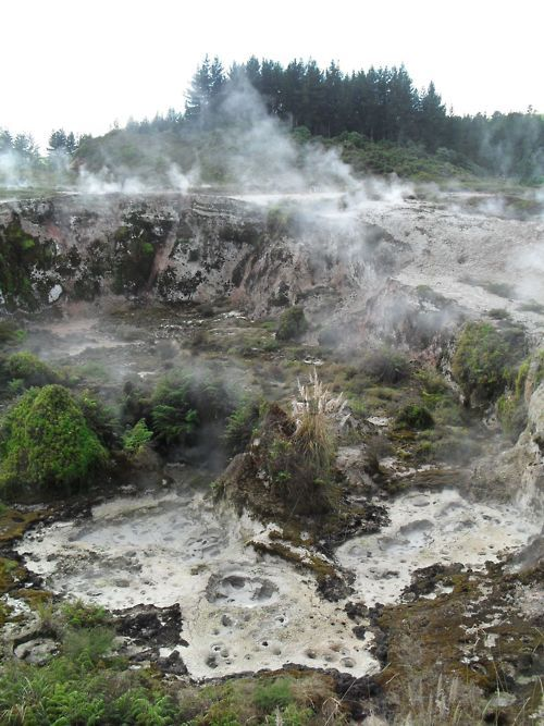 Craters of the Moon, Taupo...an amazing valley with geothermal vents and bubbling mudpots