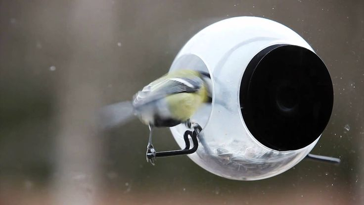Vogelhuisje Bird Feeder van Born in Sweden / Bird House Bird Feeder from Born in Sweden #bird #feeder #birdhouse #vogelhuisje