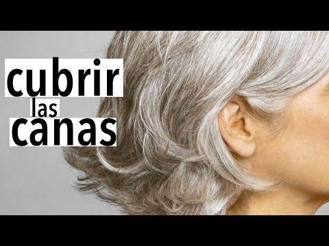 Video: Deshazte De Las Canas Y Cúbrelas De Manera Natural Con Este Nuevo Método