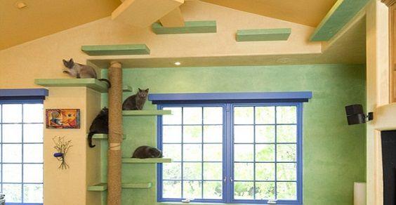 10 idee per una casa a misura di cani e gatti