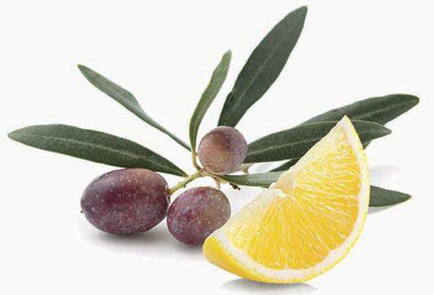 Merituuli & oliivi