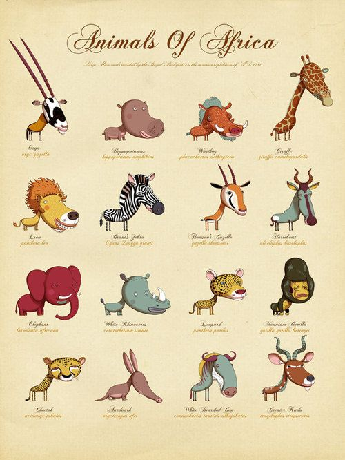 #animals #cute