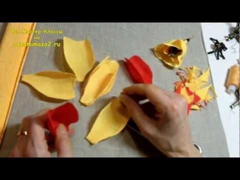Массер-Класс Хэллоуин урок №1
