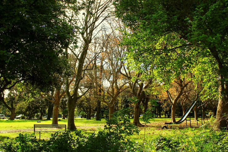 Rondebosch Park, on the corner of Campground Road and Sandown Road, is the perfect place for the kids to play, picnics on the grass and dogs to be walked.