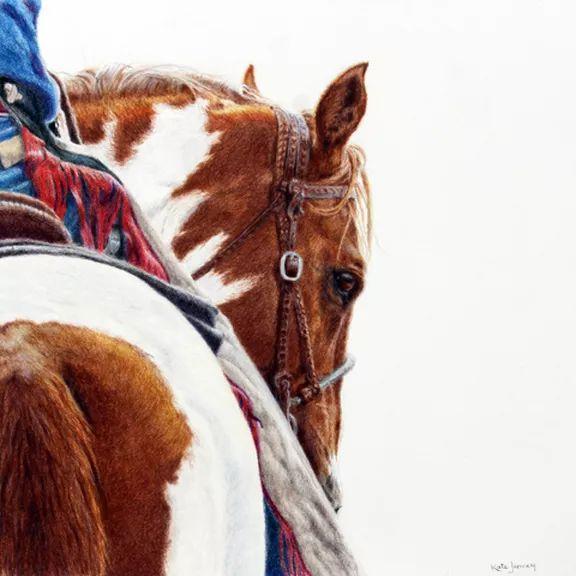 Kate Jenvey Fine Artist