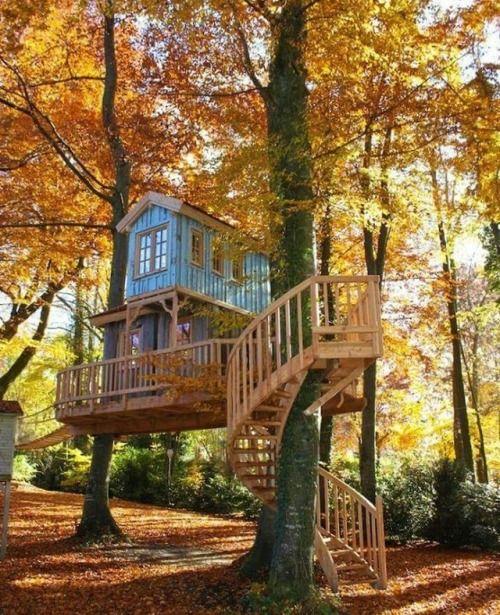 5302 best Tree Houses images on Pinterest | Tree houses