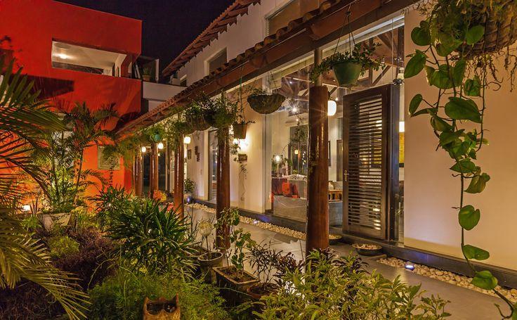 Oświetlony ogród nocą https://www.homify.pl/katalogi-inspiracji/10006/zewnetrzne-oswietlenie-domu