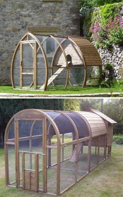 88 best feral cat ideas and info images on pinterest for Chicken enclosure ideas