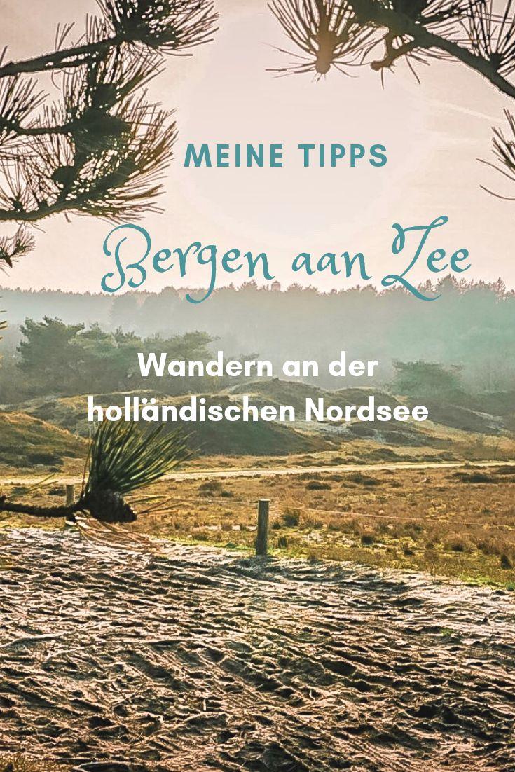 Die Dünenlandschaft rund um Bergen aan Zee ist einfach wunderschön zum Wandern…