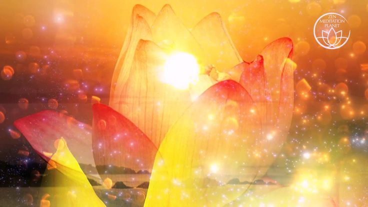 Meditation Music: Gentle Sounds and Healing Melodies for Yoga & Massage