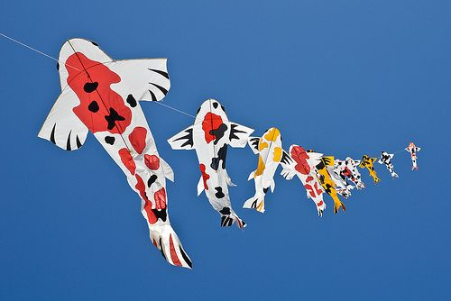 Japanese kites koi 2 asian pinterest for Koi fish kite